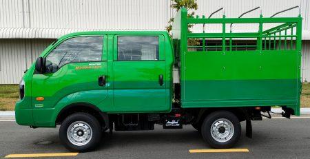 Xe tải cabin kép thaco